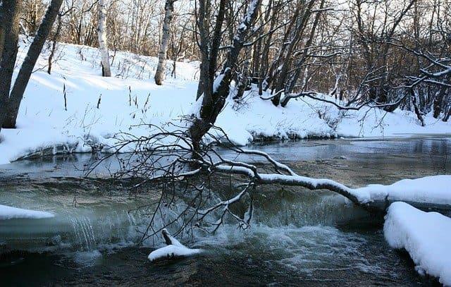 Бушует полая вода Бунин
