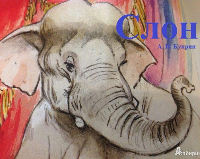 Слон А И Куприн читать