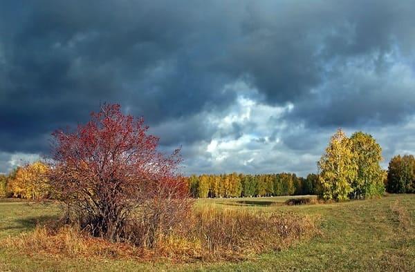 Уж небо осенью дышало Пушкин читать