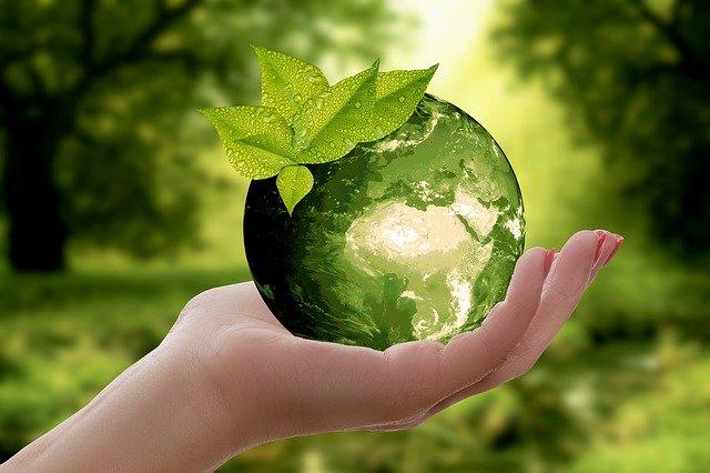 Глобальная экология кратко