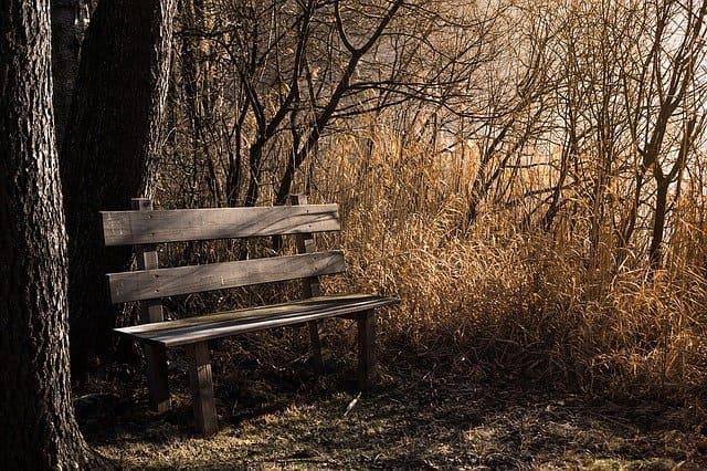 Осень-Александр Сергеевич Пушкин