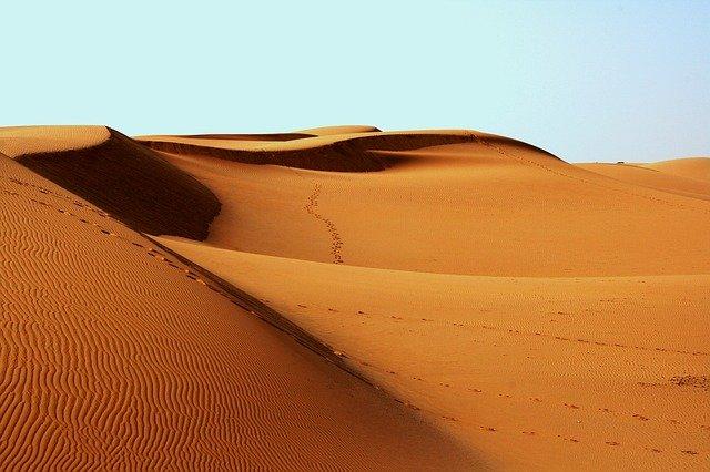 Природные зоны пустыни-кратко