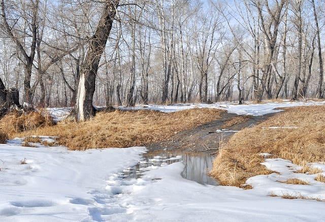 В лощинах снег слоистый как слюда