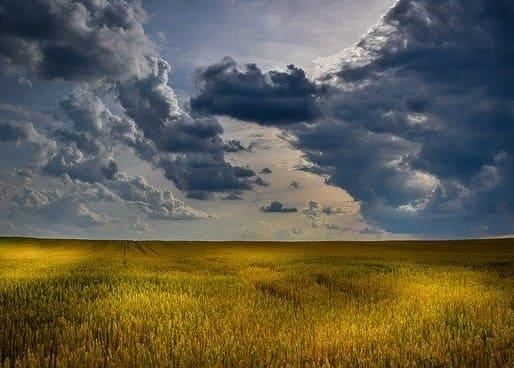 Урожай-Кольцов