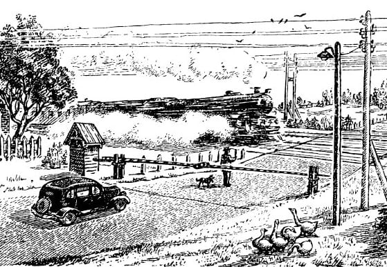Железная дорога-Житков